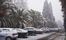 В Сочи выпадет настоящий снег