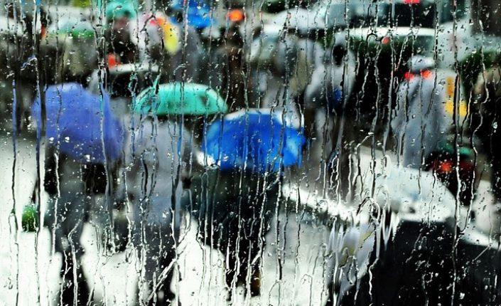 Синоптики прогнозируют дождь до конца недели